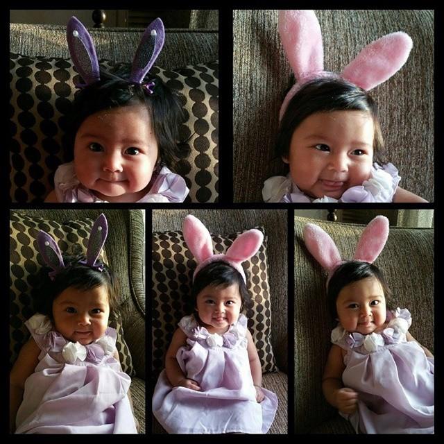 Pink Bunny Hairclips