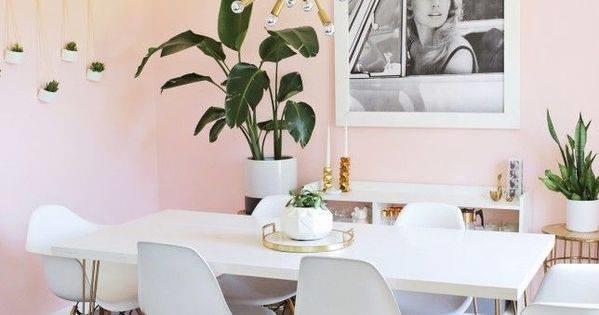 Dining Room Decoration With Indoor Plants Blurmark