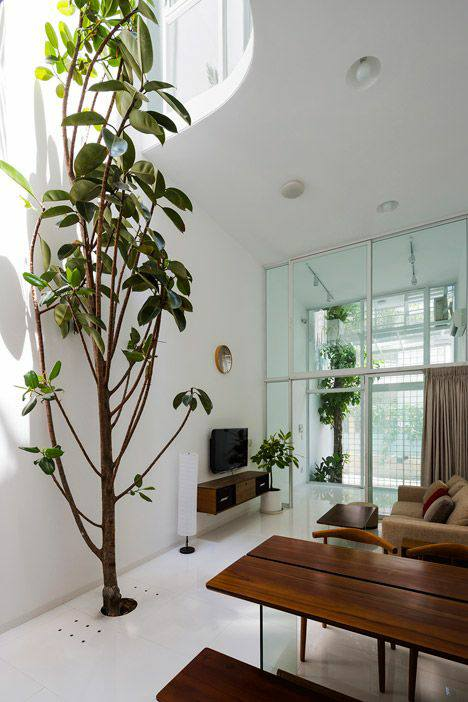 55 Easy To Maintain Beautiful Variety Of Indoor Plants To