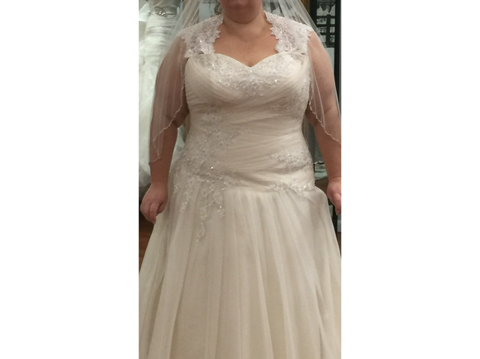 Light Beaded Lace Wedding Gown With Veils
