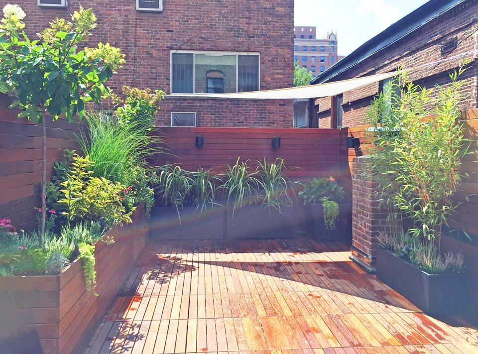 40 lush yet well trimmed terrace garden ideas for a for Terrace trees
