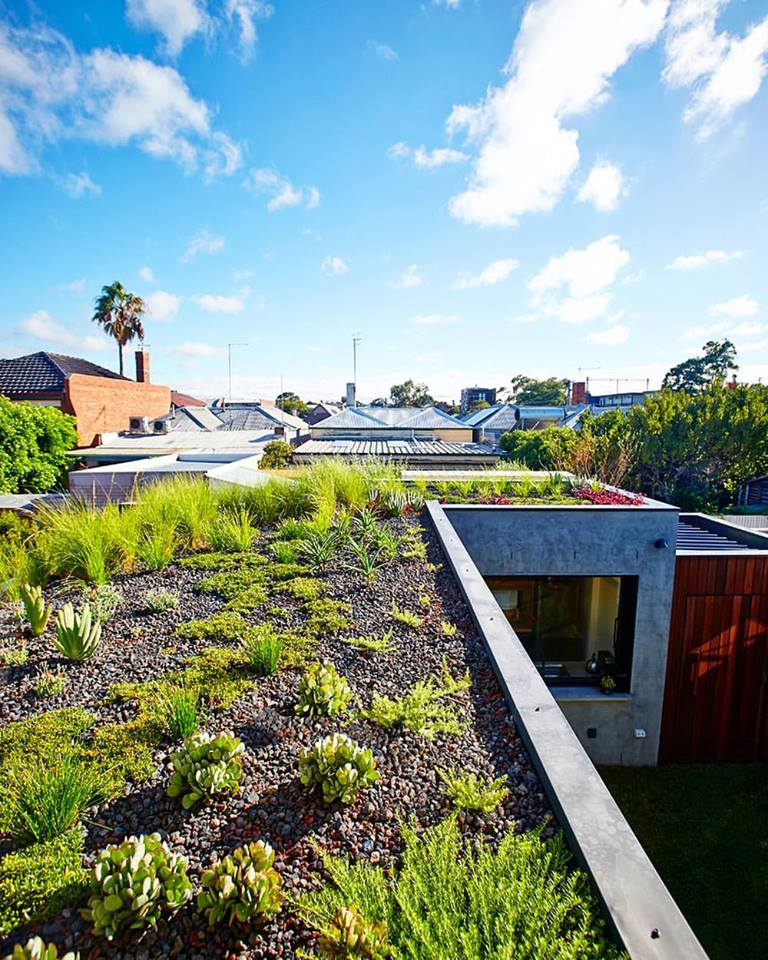 Roof Gardening Ideas 40 lush yet well trimmed terrace garden ideas for a picturesque roof