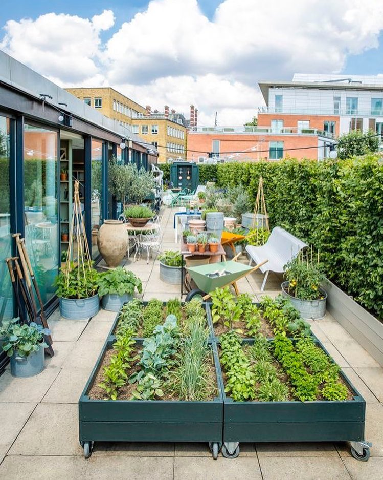 40 Lush Yet Well Trimmed Terrace Garden Ideas For A Picturesque Roof