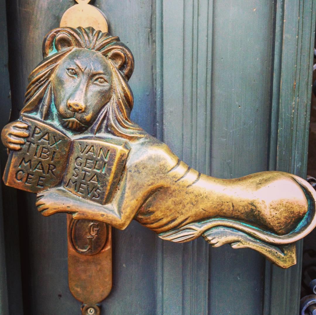 Lion Study Book Door Handle Design