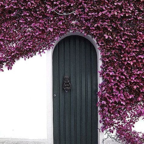 Alluring Door With Flowers & 40 Unique Front Door Design Ideas You Would Love To Implement