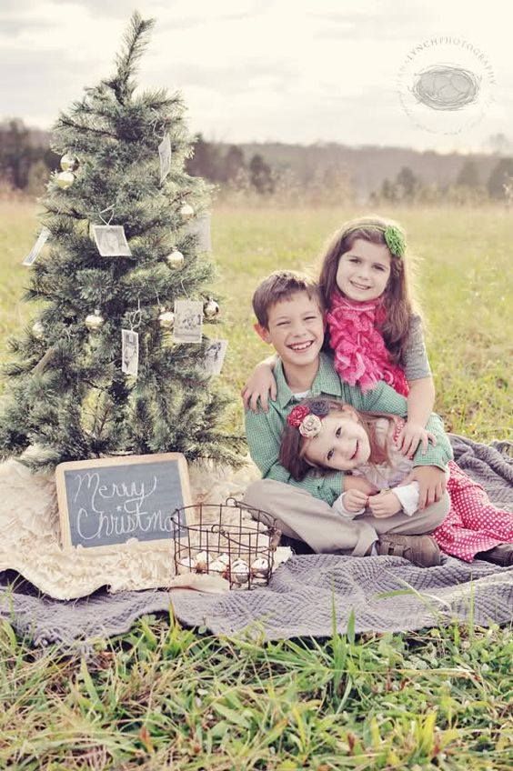 Easy Tree Decor With Photos In Outdoor