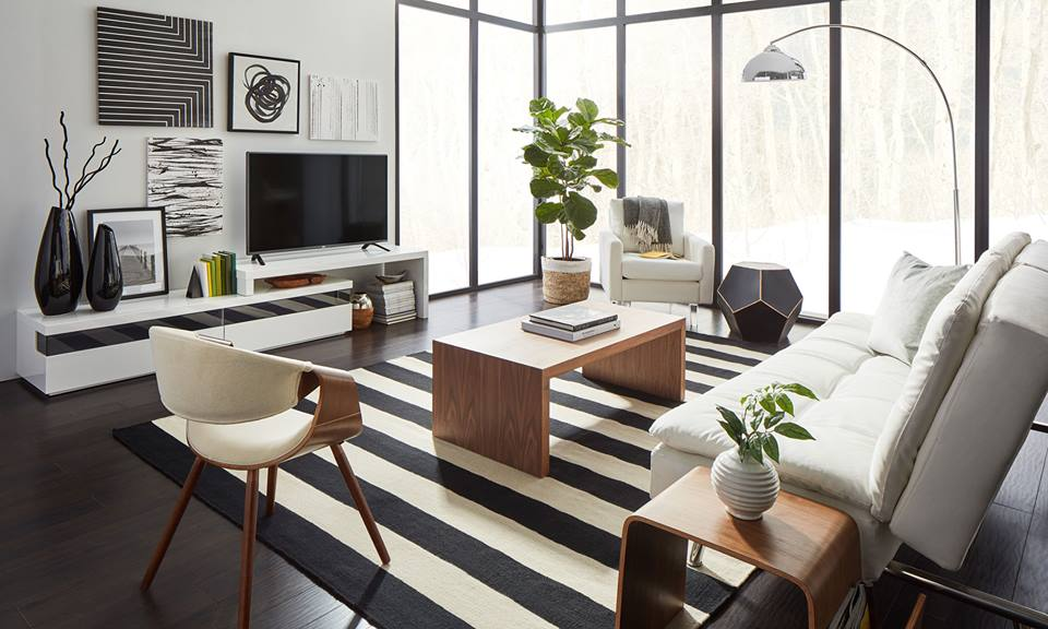 Black & White Themed Modern Living Room