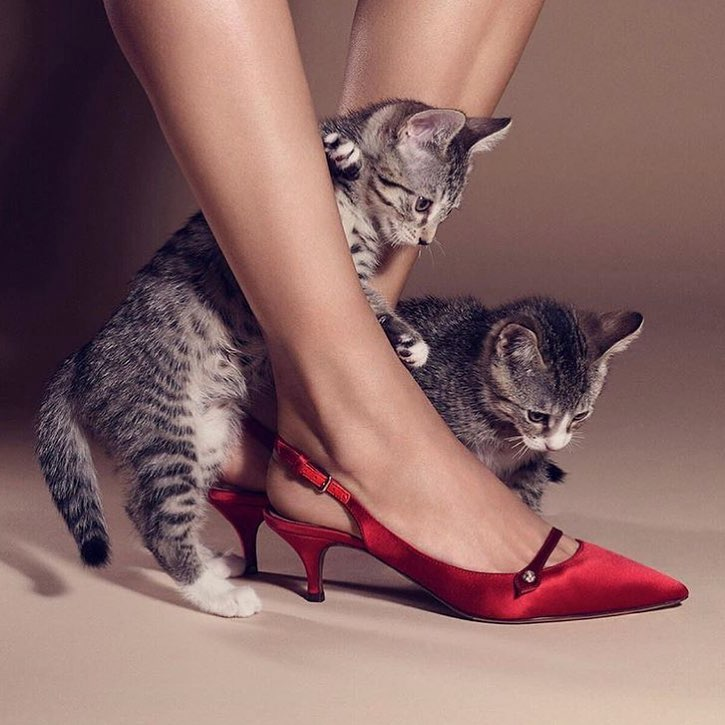 Satin Red Kitten Heels For Party